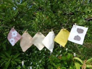 teintures végétales stage nature couture